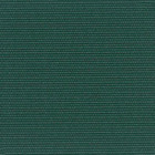 6001_Forest Green