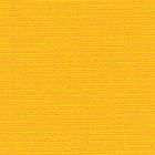 7007_Sun Yellow